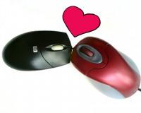 Liebe im Internet - Der Online-Dating-Ratgeber